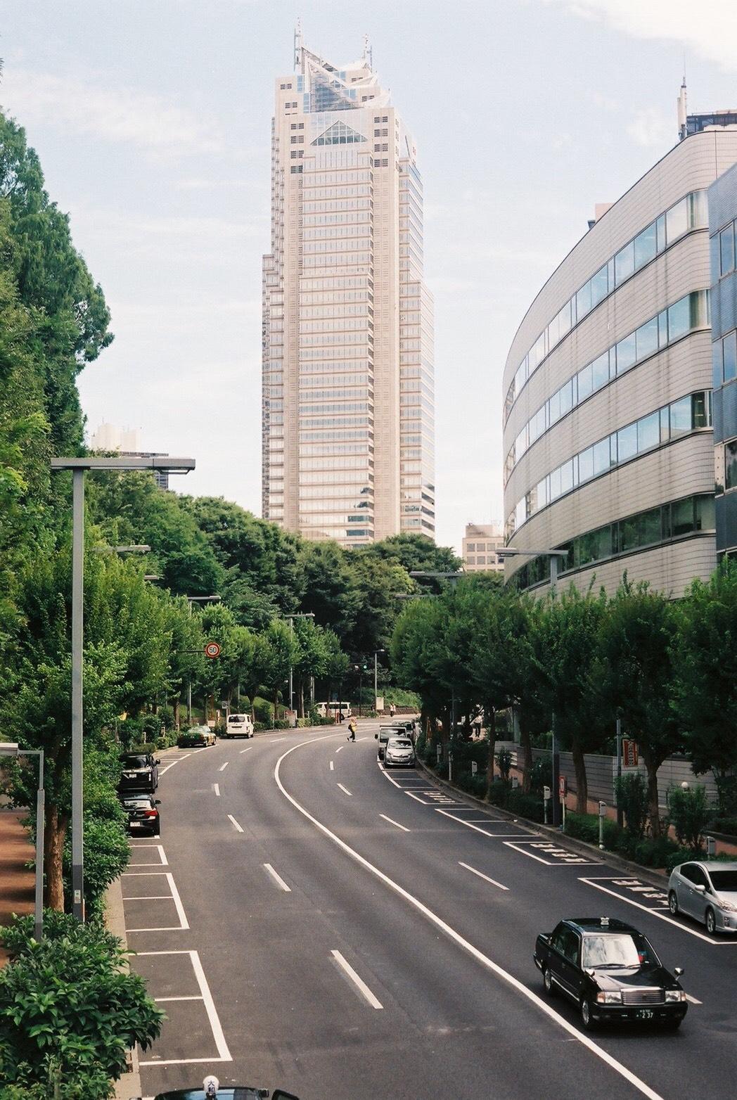 西新宿 新宿中央公園 住みやすさ